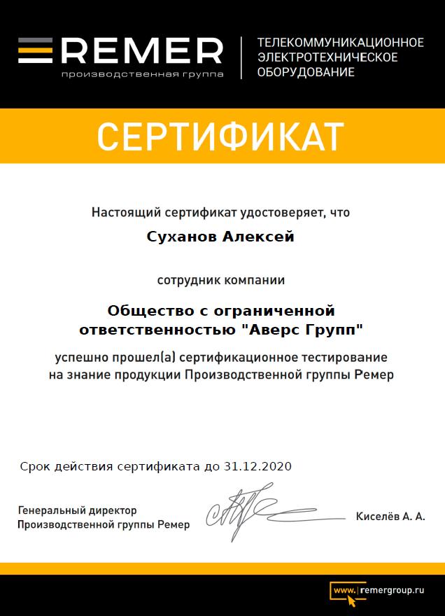 Remergroup Partner